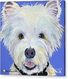 Amos Acrylic Print by Pat Saunders-White