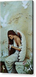 Angel Acrylic Print by Steven Wood