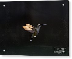 Angel Wings At Sunset Acrylic Print by Cris Hayes