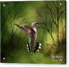 Angel Wings Acrylic Print by Cris Hayes