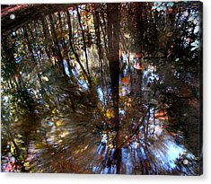 Anomaly  Acrylic Print by Tammy Cantrell