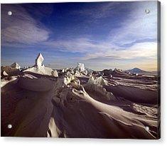 Antarctic Landscape 152 Acrylic Print by David Barringhaus