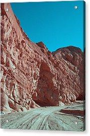 Anza Borrego Trail Acrylic Print by Naxart Studio
