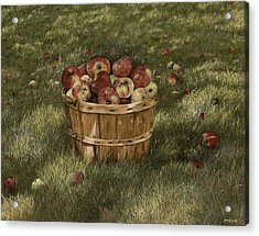 Apples In Basket Acrylic Print by Mary Ann King