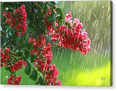 April Showers Acrylic Print by Jose Rodriguez