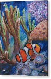 Aquarium Clown Acrylic Print by Trudy Morris