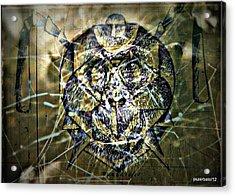 Arachnids Acrylic Print by Paulo Zerbato