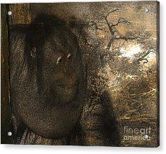 Arboreal Dreams Acrylic Print by Arne Hansen