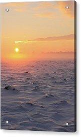 Arctic Acrylic Print by P.folk / Photography