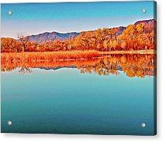 Arizona Dead Horse State Park Acrylic Print by Bob and Nadine Johnston