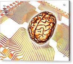Artificial Intelligence, Computer Artwork Acrylic Print by Pasieka