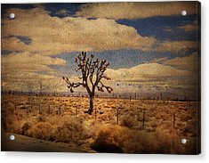 As We Go Down Life's Lonesome Highway Acrylic Print by Laurie Search