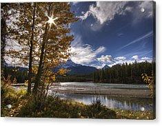 Athabasca River With Mount Fryatt Acrylic Print by Dan Jurak