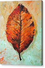 Autumn Colors Acrylic Print by Chris Steinken