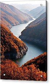 Autumn Creek Acrylic Print by Mavroudakis Fotis Photography