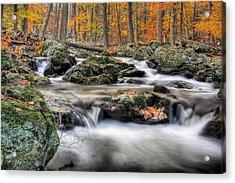 Autumn Dreams Acrylic Print by JC Findley