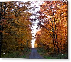 Autumn Fire Acrylic Print by Terry Eve Tanner