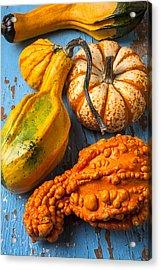 Autumn Gourds Still Life Acrylic Print by Garry Gay