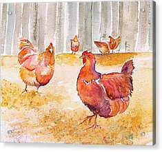 Autumn Hens Acrylic Print by Carolyn Doe