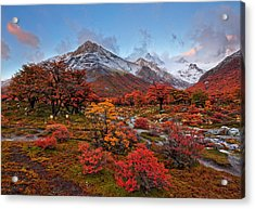 Autumn In Argentina Acrylic Print by Helminadia