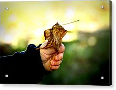Autumn In Hand Acrylic Print by Kelly Hazel