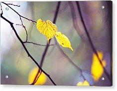 Autumn Nostalgie Acrylic Print by Jenny Rainbow