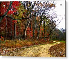 Autumn On Bottomland Road Acrylic Print by Julie Dant