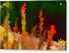 Autumn Pastel Acrylic Print by Tom Prendergast