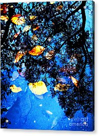 Autumn Reflection Acrylic Print by Yury Bashkin