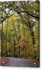 Autumn Sensation Acrylic Print by Bruce Bley