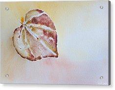 Autumn Shimmer Acrylic Print by Heidi Smith