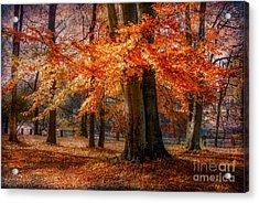 autumn skirt III Acrylic Print by Hannes Cmarits
