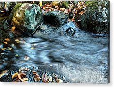 Autumn Stream Acrylic Print by HD Connelly
