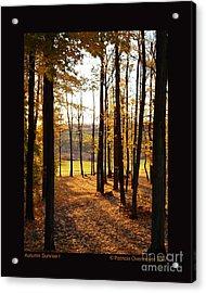 Autumn Sunrise-i Acrylic Print by Patricia Overmoyer