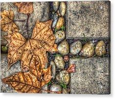 Autumn Texture Acrylic Print by Wayne Sherriff