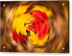 Autumn Trance Acrylic Print by Matt Dobson