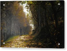 Autumn Way Acrylic Print by Jaroslaw Oleksyk