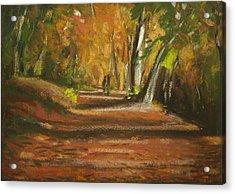 Autumn Woods 4 Acrylic Print by Paul Mitchell