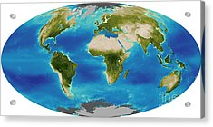 Average Plant Growth Of The Earth Acrylic Print by Stocktrek Images