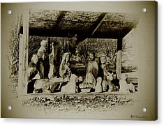 Away In The Manger Acrylic Print by Bill Cannon