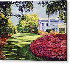 Azalea Spring Acrylic Print by David Lloyd Glover