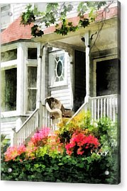 Azaleas By Porch With Wicker Chair Acrylic Print by Susan Savad