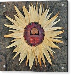 Aztec Industry  Acrylic Print by Vanessa Williams