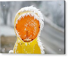 Baby It's Cold Outside Acrylic Print by Christine Till