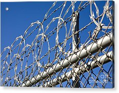 Barbed Wire And Chain Link Fence Acrylic Print by Paul Edmondson