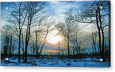 Bare Of Winter Acrylic Print by Debra     Vatalaro