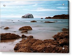 Bass Rock Acrylic Print by Amanda Finan