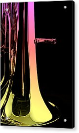 Bass Tuba Isolated On Black Acrylic Print by M K  Miller