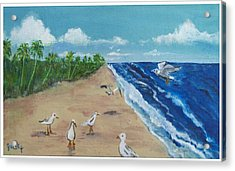 Beach Birds Acrylic Print by Paintings by Gretzky