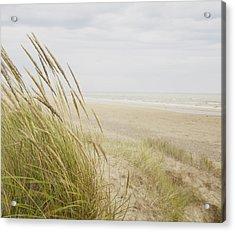 Beachscape 8 Acrylic Print by Ben Richardson